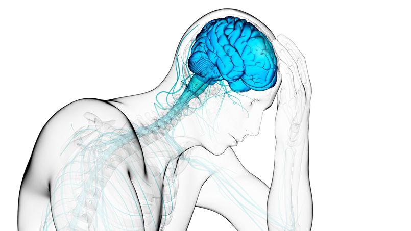 dessin homme cerveau